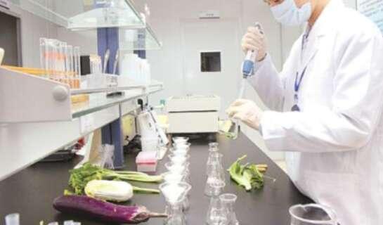 食品安全与检验