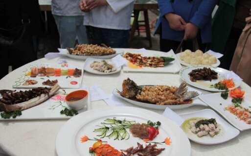 中式烹饪技能培训